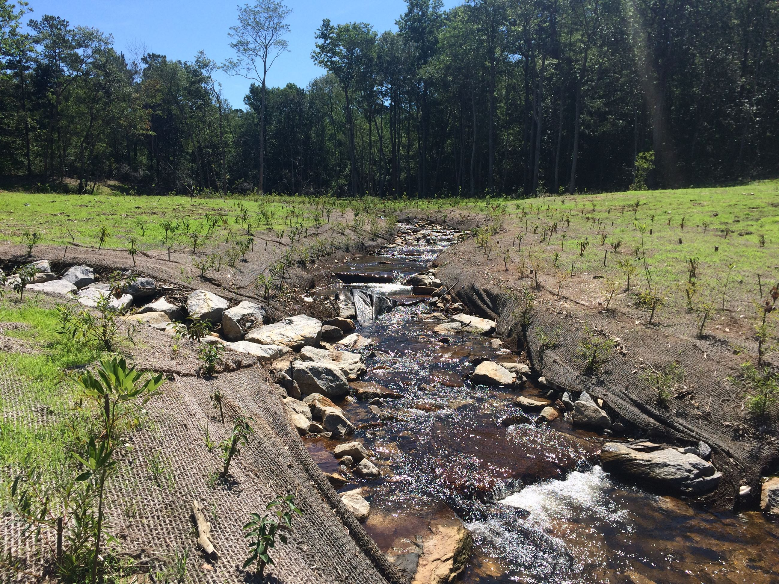 Dolive Creek at CR 13 2